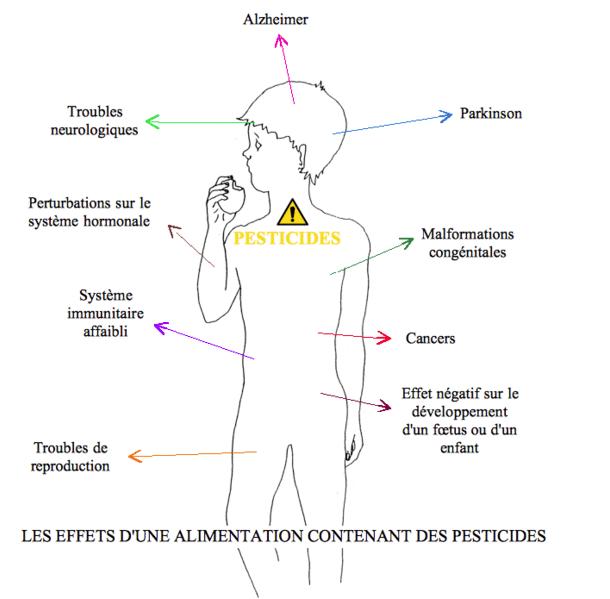 effets pesticides sur le corps