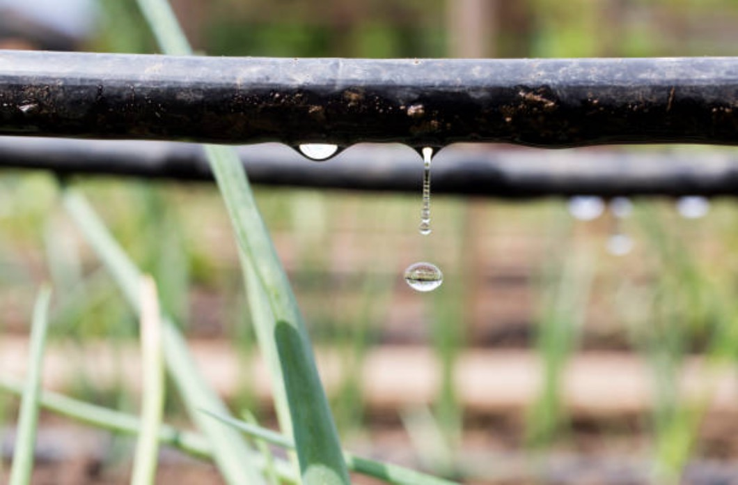 education environnement irrigation