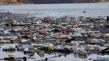 dechets plastique bouteilles eau fleuve riviere pollution