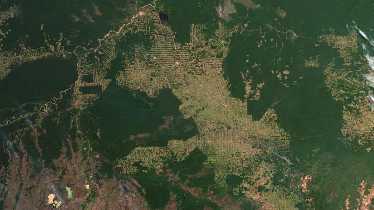 amazon_deforestation_2012