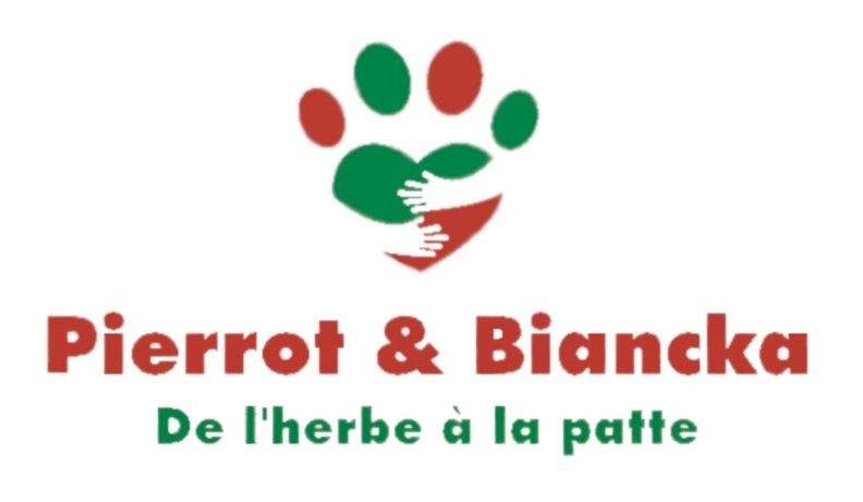 site Pierrot & Biancka