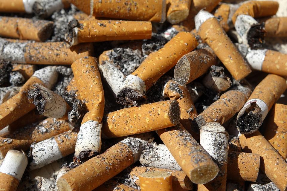 megots cigarette